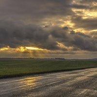 после дождя :: Роман Ишкинин