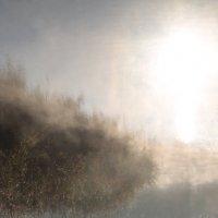 туман и солнце :: Юрий Гайворонский