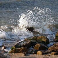 Море, море... :: Оксана Климова