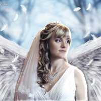 Angel :: Anatolii Tyagur Domino