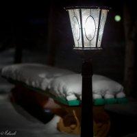 зимняя ночь... :: Виталий Левшов
