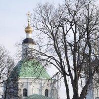 Храмы города. :: Андрей Зайцев