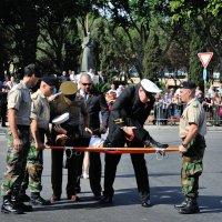 Обморок на параде. :: Leonid Volodko
