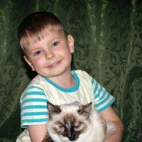"""Нашел кота... :: Sozidatel Online """"Евгений Щербаков"""""""