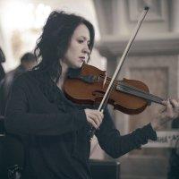 Скрипка :: Сахаб Шамилов