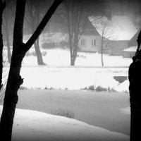 Январь, туман. :: Юрий Бондер