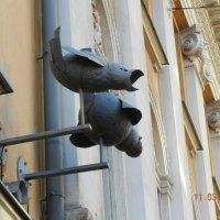Видеокамеры на улицах Хельсинки :: Valentina Altunina