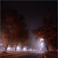 Под покровом ночи и тумана... :: Александр Чорный
