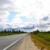 Дорога на Север :: Valeriy Somonov