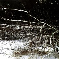 выпал снег :: Сергей