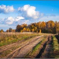 Дорога в осень :: Анатолий 71