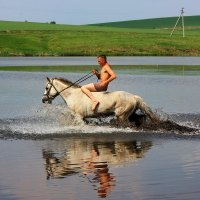 Купание белого коня. :: Наталья Юрова