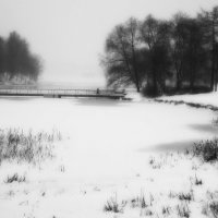 Зимний туман :: sv.kaschuk