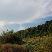 Река Угра. :: Анастасия Иванова