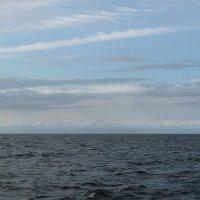 Белое Соловецкое море (август 2010) :: Наталья Кочетова