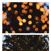 рождественская елка на Marienplatz. Австрия :: Daria Mayer