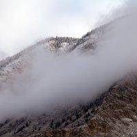 Снежное облако :: Валентина Кобзева