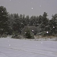Начало зимы :: Андрей Дворников