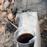 кофе :: елена славинскене