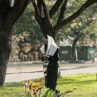 Молитва«Израиль, всё о религии...» :: Shmual Hava Retro