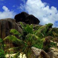 Пляж Anse Union :: Михаил Баевский
