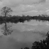По дороге к затопленному храму Ник Пеан, Ангкор, Камбоджа :: Елена Шацкова