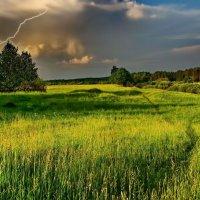 О, грибной дождь, протяни вниз хрусталя нить.... :: Александр | Матвей БЕЛЫЙ