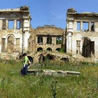 Когда то был дворец! :: Владимир Собянин