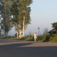 Утро :: Борис Приходько