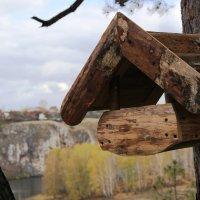 Птичкина столовая :: Ольга Чазова