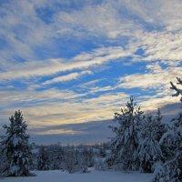 Голубизна неба :: Александр Преображенский