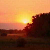 Теплый летний закат в пойме :: Олька Н