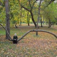 Стал тяжёлым и большим :: Алексей Селиванов