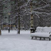 Зима :: Irina ----