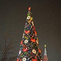 Новогодняя елка на Красной Площади :: Евгения Михайлова