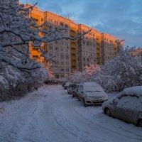 Утро...у нас во дворе... :: Сергей Сердечный