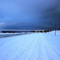 Зимняя набережная :: Irene Farkh