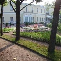 Собственный садик, утро :: Александр Петров