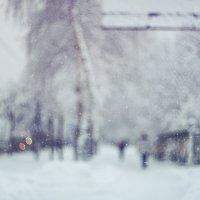 Зимы холодной белые штрихи :: Daniela