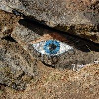 Eye :: Алексей П.