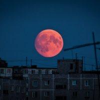 Кровавая луна :: Dmitriy Abrosimov