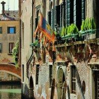 в Венеции :: ирина )))