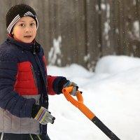 А снег идет... :: Олег Петрушов