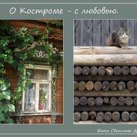 """Фотопроект """"О Костроме с любовью"""" :: Светлана Дерепащук"""