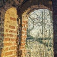 окно :: Илья Казанцев