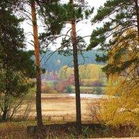 Осень на р.Исеть :: Геннадий Ячменев