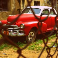 Red car :: Arman S