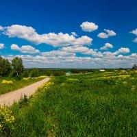 Деревня :: Сергей Долганов