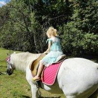 Покатай меня лошадка :: Екатерина Василькова