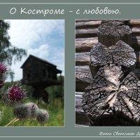 Фотопроект О Костроме с любовью :: Светлана Дерепащук